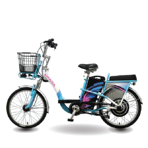 Asama Ebk or 2202 300x300 - Xe đạp điện Asama Ebk or 2202