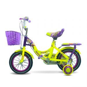 Buwaw XDTE chitiet 01 300x300 - Xe đạp trẻ em Buwaw