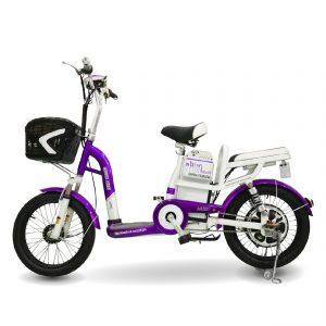 Maket TERRA MOTOR PRIDE chitiet 01 01 1 300x300 - Xe đạp điện Terra Motor Pride