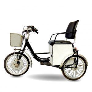 Xe đạp điện 3 bánh 01 300x300 - Xe đạp điện 3 bánh