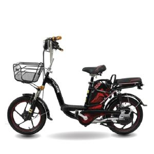 Xe đạp điện Bmx phuộc đôi 300x300 - Xe đạp điện Bmx phuộc đôi