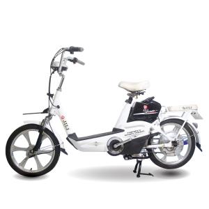 Xe đạp điện Jili H10 1 300x300 - Xe đạp điện Jili H10