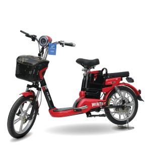 Xe đạp điện Winter Nijia 2018 300x300 - Xe đạp điện Winter Nijia 2018
