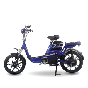 Xe đạp điện Yamaha H10 300x300 - Xe đạp điện Yamaha H10