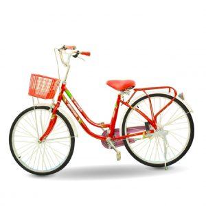 Xe dap Daygawax banh 24 01 300x300 - Xe đạp Daygawa bánh 24