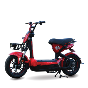 Xe dap dien Giant 133S S200 1 300x300 - Xe đạp điện Giant 133S-S200