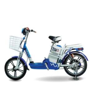 Xe dap dien Iris 300x300 - Xe đạp điện Iris