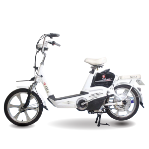 Xe dap dien Jili H10 1 1 300x300 - Xe đạp điện Jili H10