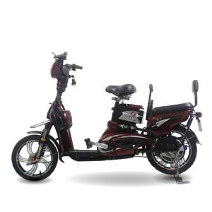 Xe dap dien Sport 1 300x300 - Xe đạp điện Sport