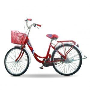 Xe dap nu daygawa 01 300x300 - Xe đạp nữ Daygawa cá heo