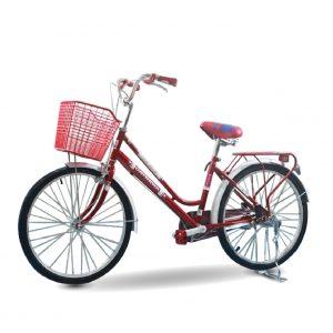 xe dap nu daygawa 01 300x300 - Xe đạp mini nữ Daygawa 20