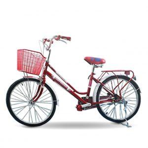 xe dap nu daygawa banh 24 01 1 300x300 - Xe đạp Mini Daygawa 24