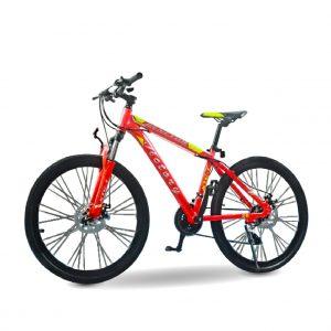 xe dap the thao victory 01 300x300 - Xe đạp thể thao Victory hợp kim nhôm