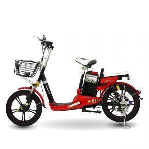 Maket SUNNY FLY chitiet 01 01 300x300 - Xe đạp điện Sunny Fly