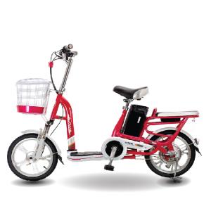 Xe đạp điện Aima ED310D 2019 300x300 - Xe đạp điện Aima ED310D 2019