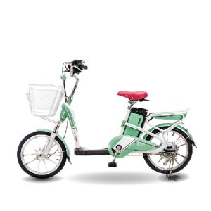 Xe đạp điện Aima ED318 2019 300x300 - Xe đạp điện Aima ED318 2019