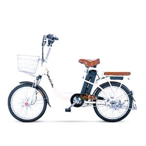 Xe đạp điện Aima EL112 2019 300x300 - Xe đạp điện Aima EL112 2019