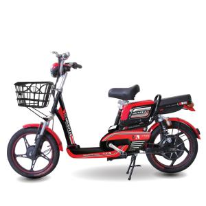 Xe đạp điện Alpha Color A8 300x300 1 - Xe đạp điện Alpha Color A8