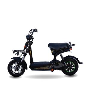 Xe đạp điện Anbico AP1502 New 300x300 - Xe đạp điện Anbico AP1502 New