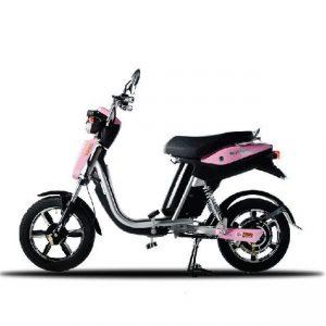 Xe đạp điện Anbico Batman X 300x300 - Xe đạp điện Anbico Batman-X
