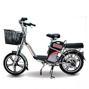 Xe đạp điện Asista Bmm Inox 18inch 300x300 - Xe đạp điện Asista Bmm Inox 18inch