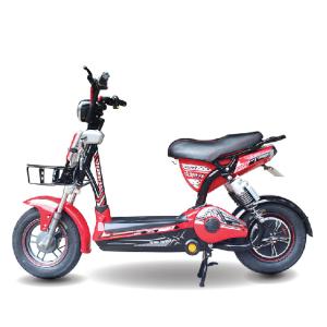 Xe đạp điện Everest EM9 12A 2019 300x300 - Xe đạp điện Everest EM9 12A 2020