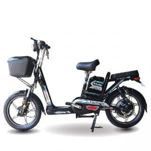 Xe đạp điện Everest EM9 2019 300x300 - Xe đạp điện Everest EM9 2020