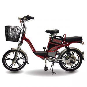 xe dap dien asista bmm ps 18inch 300x300 - Xe đạp điện Asista Bmm PS 18inch