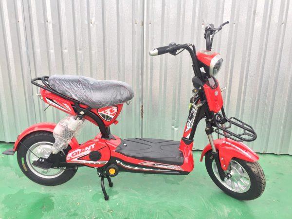 xe dap dien xe dap dien giant133s mini 5 600x450 - Xe đạp điện Giant 133S - Mini