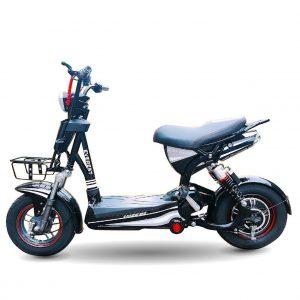 Xe dap dien Everest EM12 New 02 300x300 - Xe đạp điện Everest EM12 New