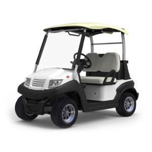Buggy Eagle 202 01 300x300 - Xe Ô Tô Buggy Eagle 202