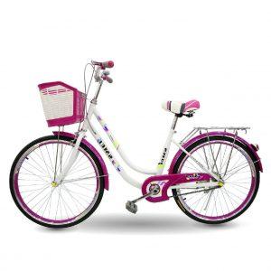 Xe dap SMEI 02 300x300 - Xe đạp mini SMEI