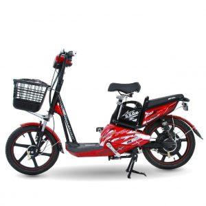 Xe dap dien dk strong 02 1 300x300 - Xe đạp điện DKBike Strong