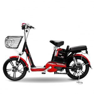 xe dap dien JVC Wiwin 01 300x300 - Xe đạp điện JVC Eco Wiwin