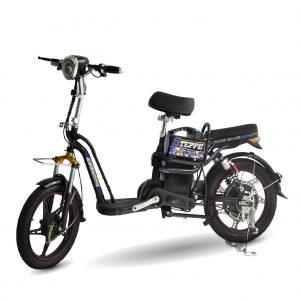 XE DAP DIEN STEPPE 02 300x300 - Xe đạp điện Steppe