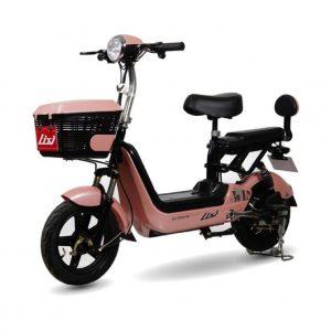 Xe dap dien Lixi TN 01 300x300 - Xe đạp điện LiXi TN