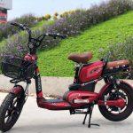 Xe đạp điện Osakar giá bao nhiêu, mua ở đâu là ổn nhất?
