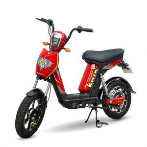 XE DAP DEIN BAT S 01 300x300 - Xe đạp điện Bats Anbico