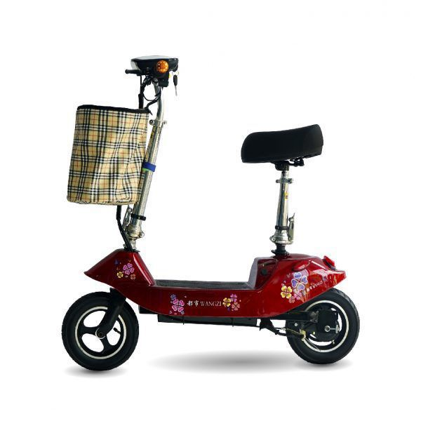 XE DIEN SCOOTER WANGZI 1 01 600x600 - Xe điện Scooter Wangzi