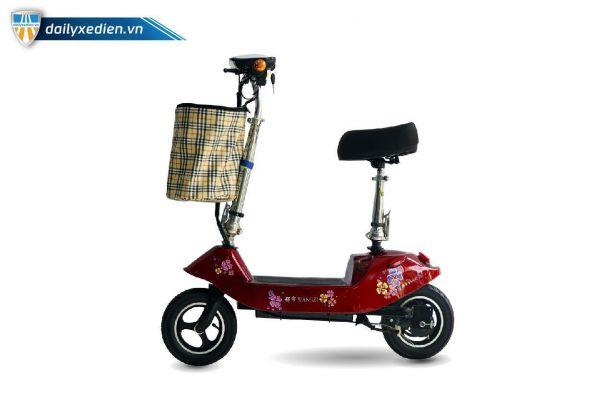 XE DIEN SCOOTER WANGZI 1 02 600x400 - Xe điện Scooter Wangzi