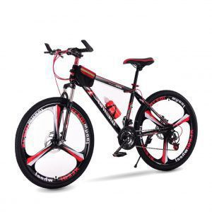 xe dap dien 01 300x300 - Xe đạp thể thao WEINIK
