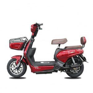 Chali 01 01 300x300 - Xe đạp điện AP
