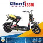 Giant 133M 150x150 - Đại lý xe đạp điện Giant M133 chính hãng giá rẻ tại TP. HCM