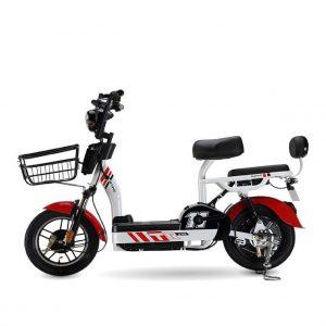 TR 02 01 01 300x300 - Xe đạp điện Nhập Khẩu T-R