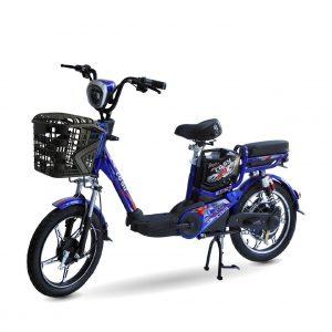 XE DAP DIEN CO SY 01 1 300x300 - Xe đạp điện Co Sy RC1