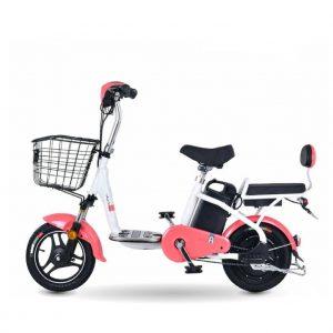 akiding 01 300x300 - Xe đạp điện Akiding