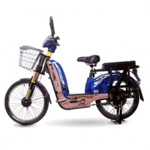 oem 03 01 300x300 - Xe đạp điện OEM