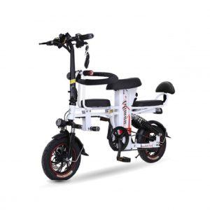 xe dap dien aliman 01 300x300 - Xe đạp điện Aliman