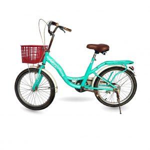 xe dap dien YIHANG 01 300x300 - Xe đạp YiHang cũ