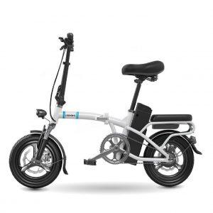 zhengbu 09 01 300x300 - Xe đạp điện Zhengbu